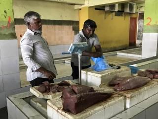 Malé Fish Market