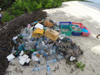 Beach cleaning in B.Goidhoo